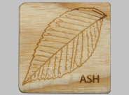 Ash Traditions and Folklore