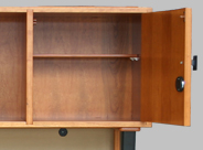 Two Locking Doors with Media Shelves