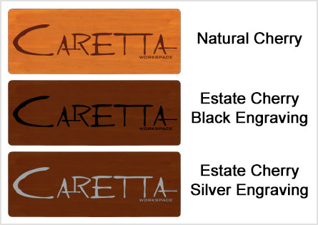 Panel Color Options